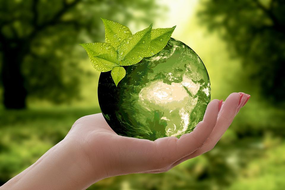 Oggi In Tutto Il Mondo Si Celebra L Earth Day La Giornata