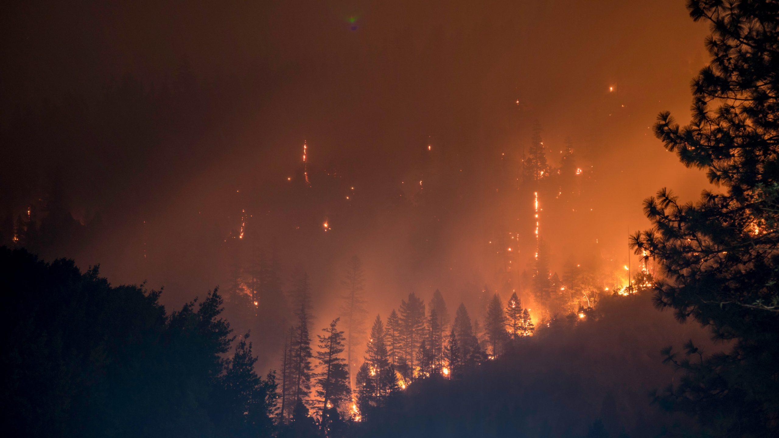 Incendi boschivi: l'UE va in aiuto di Italia, Grecia, Albania e Macedonia del Nord